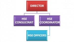 HSE-Organization